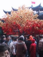 happy_tree
