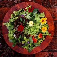 Salad20bowl